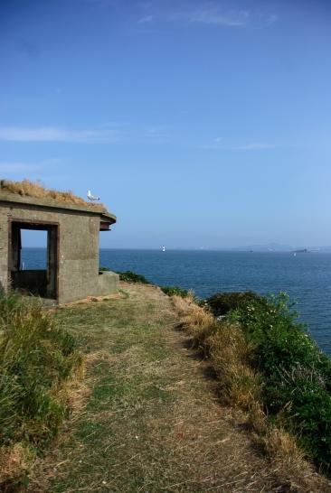 Inchcolm island_0115_edited-1