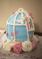 Lou's Birdcage Cake